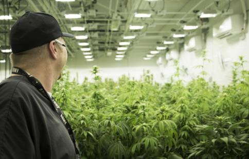 BASK — the SouthCoast's first medical marijuana dispensary — to open next week