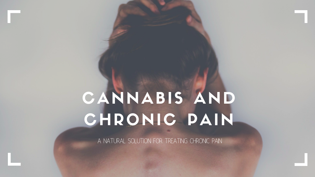 Patients are Using Cannabis for Chronic Pain